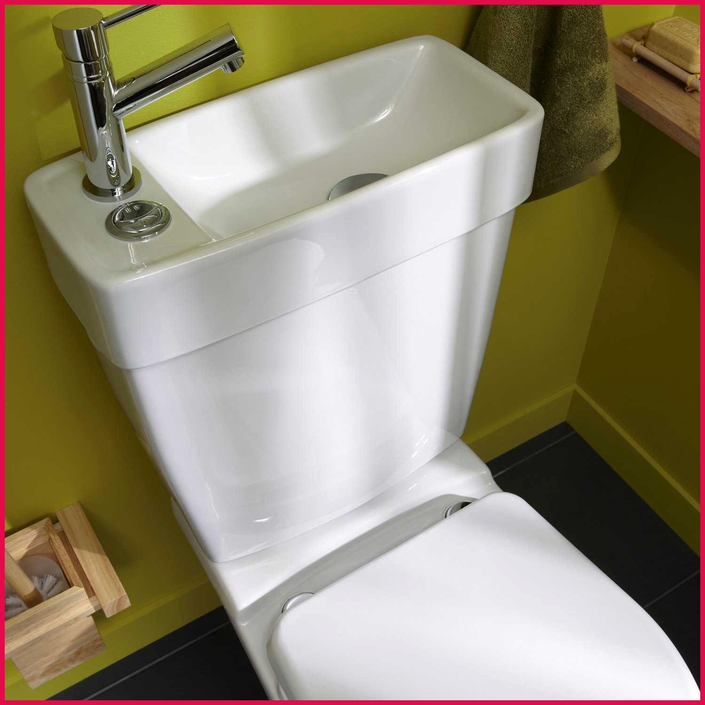 Toilette Avec Lavabo